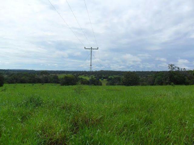 Fazenda c/ 840he c/ aprox. 400he formado, c/ GEO, Guiratinga-MT - Foto 6