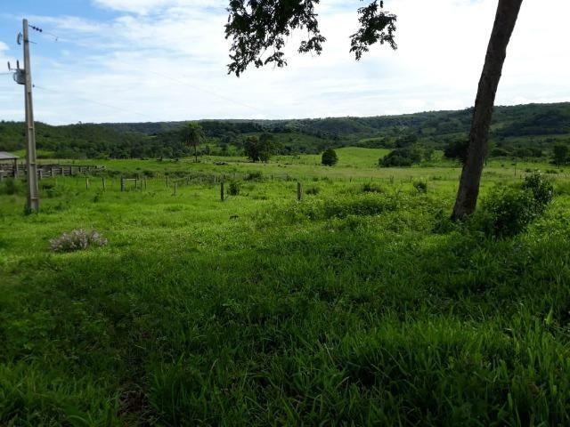 Fazenda c/ 912he, 550he formados, Terra boa, Itiquira-MT - Foto 16