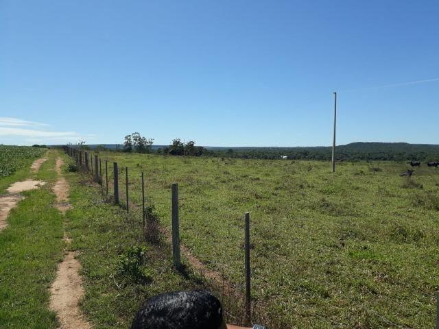 Fazenda c/ 620he, plantando em 200he, 240he em pastagens, Itiquira-MT - Foto 10