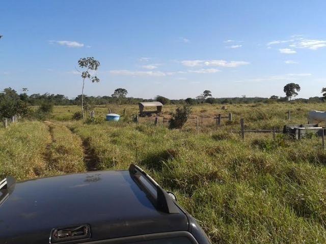 Fazenda com 1.000he c/ 80% formado, 50km de Cuiabá - Foto 7