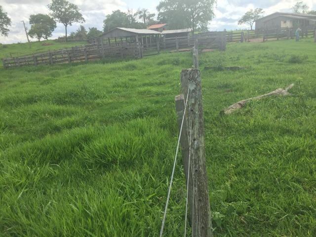 Fazenda c/ 912he, 550he formados, Terra boa, Itiquira-MT - Foto 8