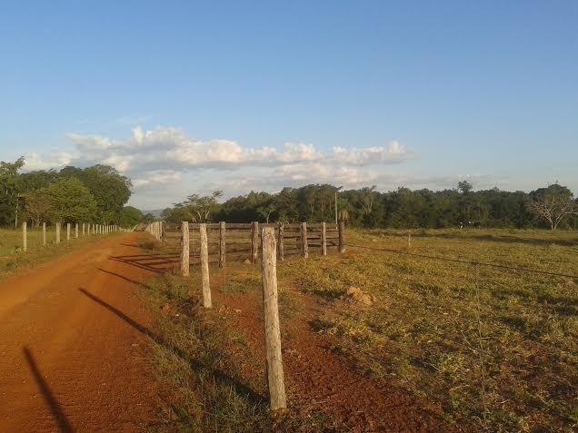 Fazenda c/ 500he c/ 315he formado, a 50km de Cuiabá-MT - Foto 6