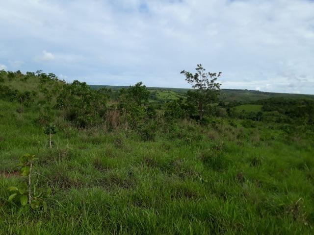 Fazenda c/ 912he, 550he formados, Terra boa, Itiquira-MT - Foto 12