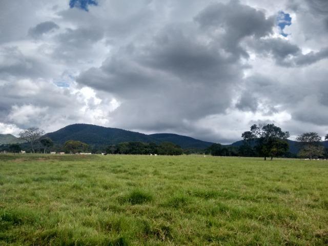 Fazenda 570 Hectares Grande Oportunidade - MT - Foto 8