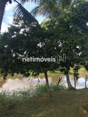Sítio à venda com 4 dormitórios em Jauá, Camaçari cod:776377 - Foto 3