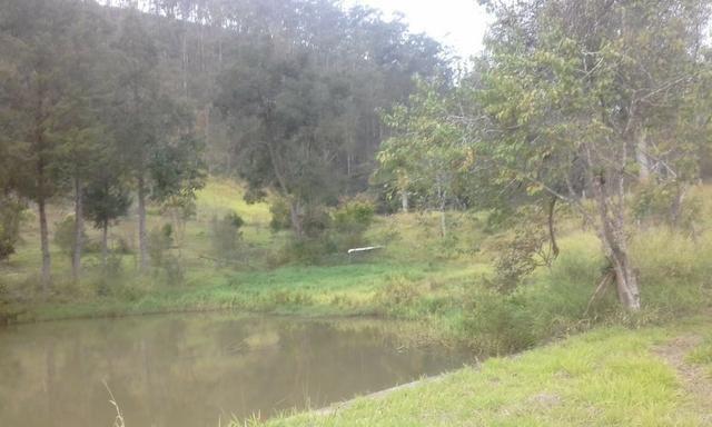 Sitio rico em água com cachoeiras, rios e lagos de piscina naturais, leia anúncio!!! - Foto 15