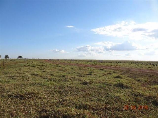 Fazenda c/ 1.700he c/ 80% formados, dupla aptidão, Itiquira-MT, pego 50% em imóvel no PR - Foto 5