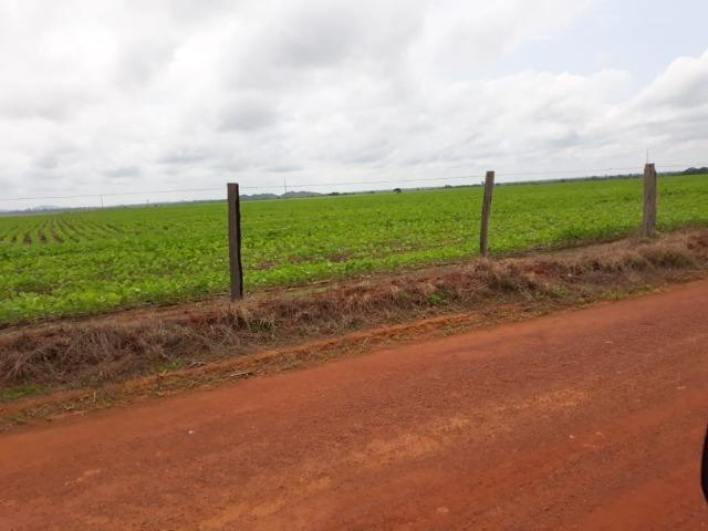Fazenda 2.527 Hectares Plantando Lavoura - Grande Oportunidade - MT