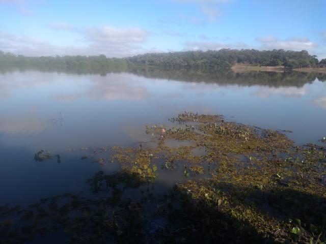 Fazenda c/ 920he, com 600he formados, as margens da BR, a 35km de Cuiabá-MT - Foto 6