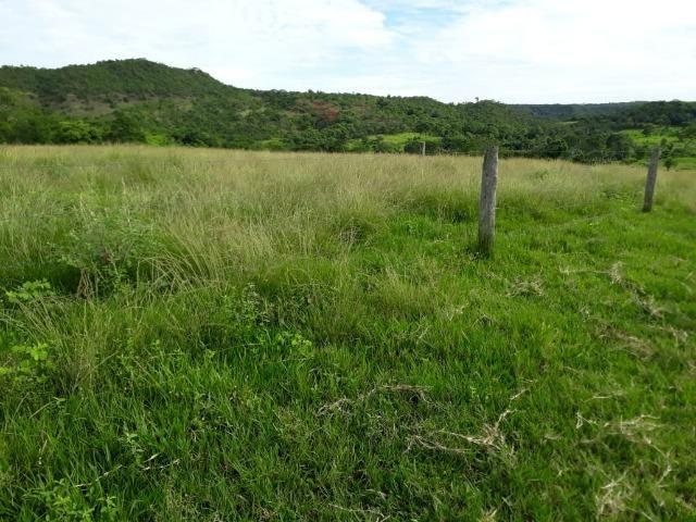 Fazenda c/ 912he, 550he formados, Terra boa, Itiquira-MT - Foto 3