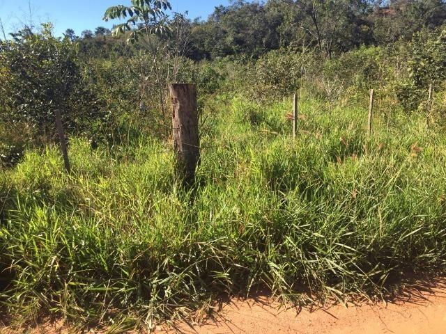 Fazenda c/ 570he, c/ 90% aberto/juquirado, 8km de Itiquira-MT, entrada + 4 parcelas - Foto 5