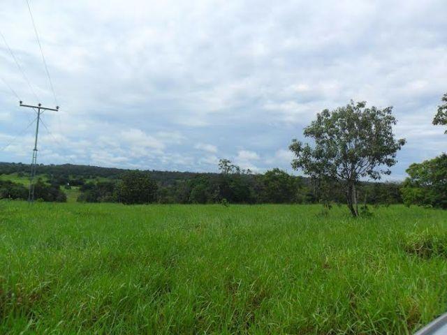 Fazenda c/ 840he c/ aprox. 400he formado, c/ GEO, Guiratinga-MT - Foto 5