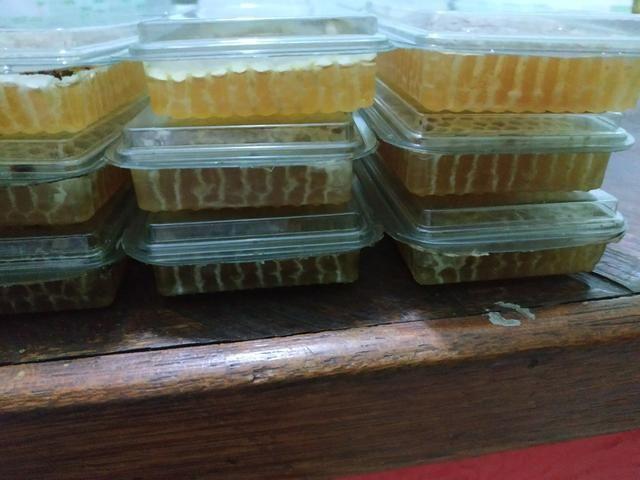 Favos de mel ,feito pelas abelhas direto na bandeja!! florada silvestre - Foto 2