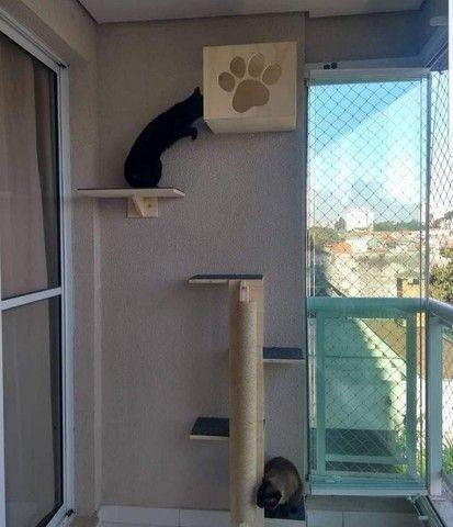 Circuito para gatos  - Foto 3