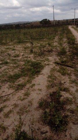 Terreno urgente no precinho - Foto 3
