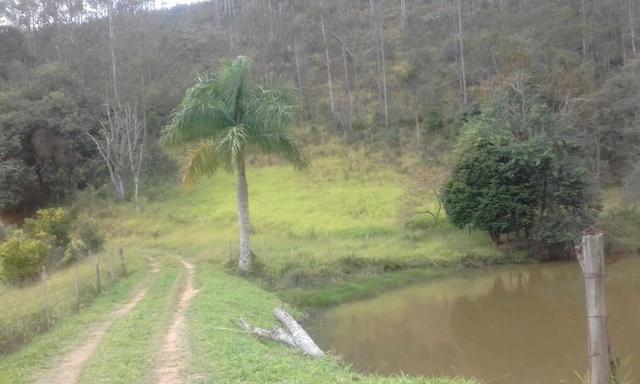 Sitio rico em água com cachoeiras, rios e lagos de piscina naturais, leia anúncio!!! - Foto 13