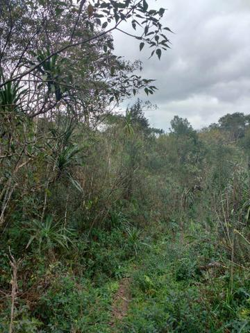 Chácara 12 km do centro de Bocaiúva - Foto 7