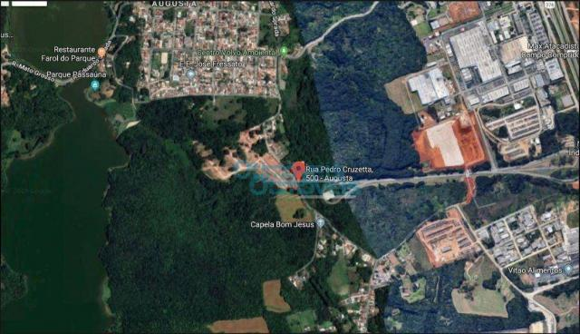 Terreno à venda, 3693 m² por r$ 1.124.222 - augusta - curitiba/pr - Foto 10