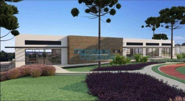Terreno à venda, 3693 m² por r$ 1.124.222 - augusta - curitiba/pr