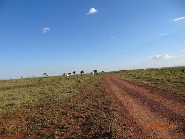 Fazenda c/ 1.700he c/ 80% formados, dupla aptidão, Itiquira-MT, pego 50% em imóvel no PR - Foto 4