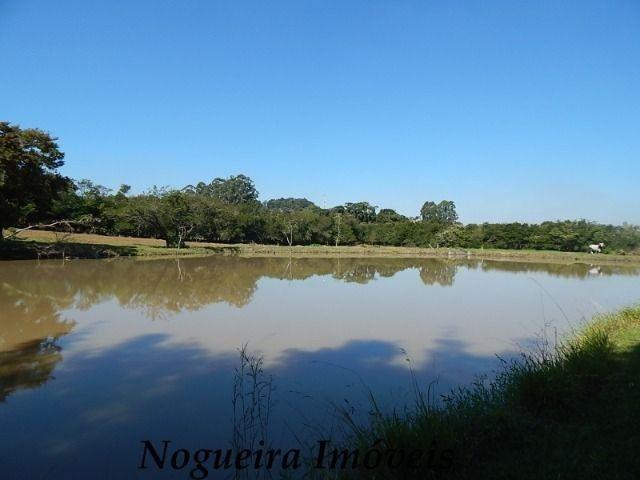Sítio com 4 lagos, excelente para pesqueiro (Nogueira Imóveis Rurais)