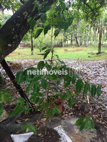 Sítio à venda com 4 dormitórios em Jauá, Camaçari cod:776377 - Foto 5