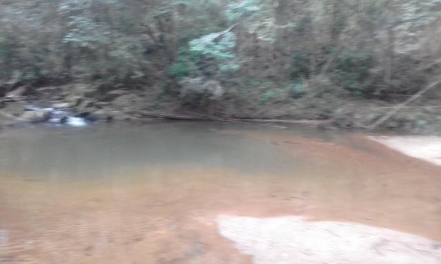 Sitio rico em água com cachoeiras, rios e lagos de piscina naturais, leia anúncio!!! - Foto 16