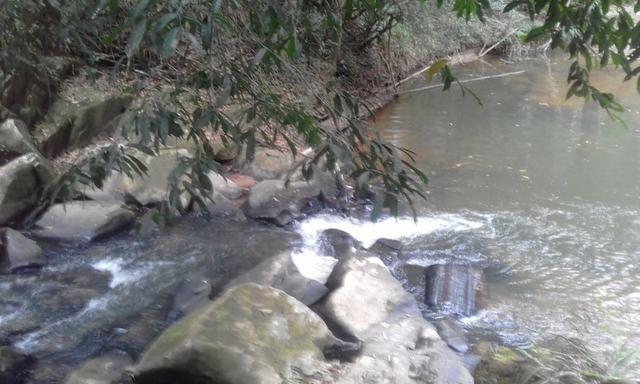Sitio rico em água com cachoeiras, rios e lagos de piscina naturais, leia anúncio!!! - Foto 20