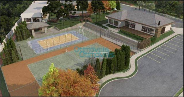 Terreno à venda, 3693 m² por r$ 1.124.222 - augusta - curitiba/pr - Foto 5
