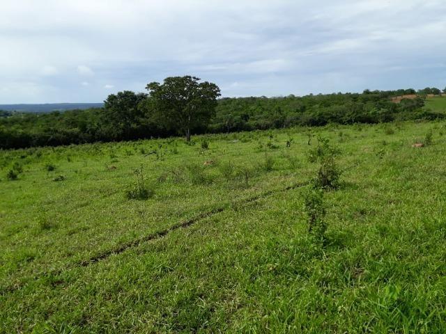 Fazenda c/ 912he, 550he formados, Terra boa, Itiquira-MT - Foto 2
