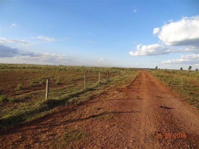 Fazenda c/ 1.700he c/ 80% formados, dupla aptidão, Itiquira-MT, pego 50% em imóvel no PR - Foto 8