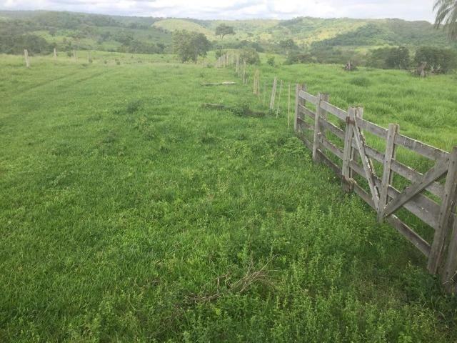 Fazenda c/ 912he, 550he formados, Terra boa, Itiquira-MT - Foto 9