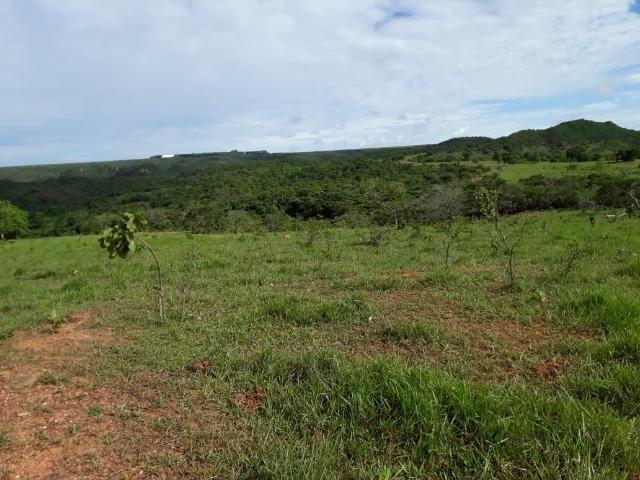 Fazenda c/ 912he, 550he formados, Terra boa, Itiquira-MT - Foto 11