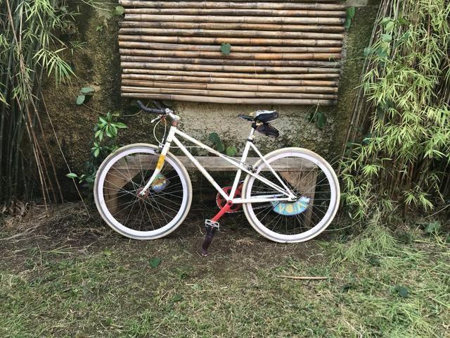 Bicicleta roda fixa ou livre - Foto 3