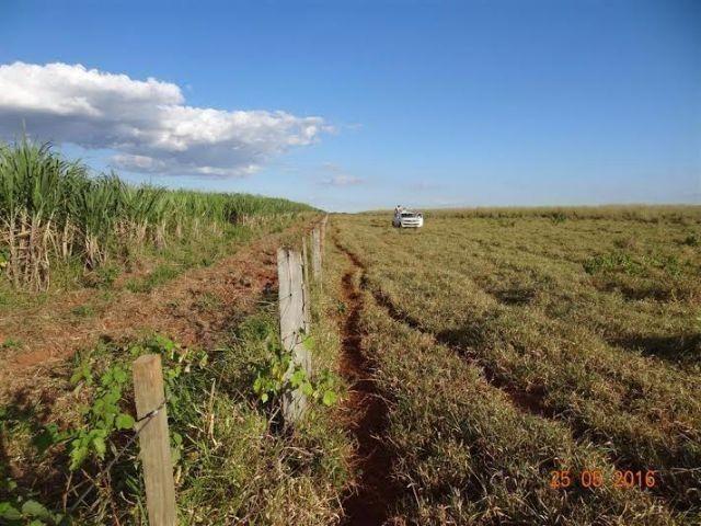Fazenda c/ 1.700he c/ 80% formados, dupla aptidão, Itiquira-MT, pego 50% em imóvel no PR - Foto 14