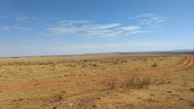 Fazenda c/ 1.700he c/ 80% formados, dupla aptidão, Itiquira-MT, pego 50% em imóvel no PR - Foto 17