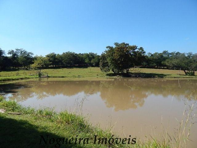 Sítio com 4 lagos, excelente para pesqueiro (Nogueira Imóveis Rurais) - Foto 8
