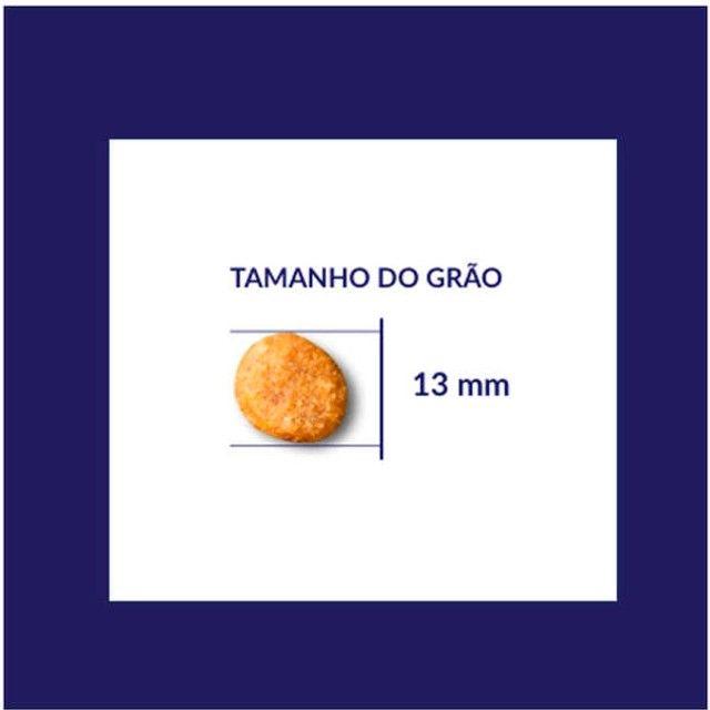 Ração Seca Nutrilus Pro Frango & Carne para Cães Adultos Premium Especial: 15kg - Foto 4