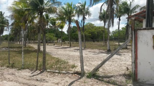 Terreno para Condominios - Foto 3