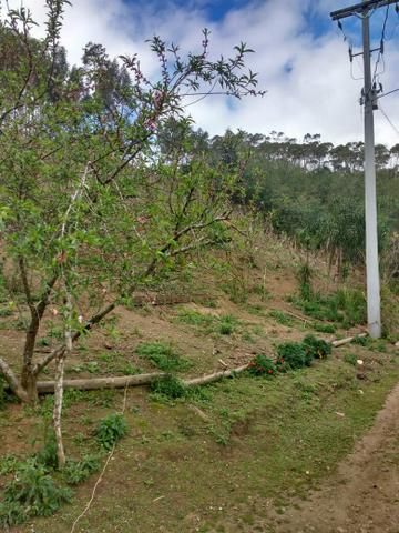 Chácara 12 km do centro de Bocaiúva - Foto 4