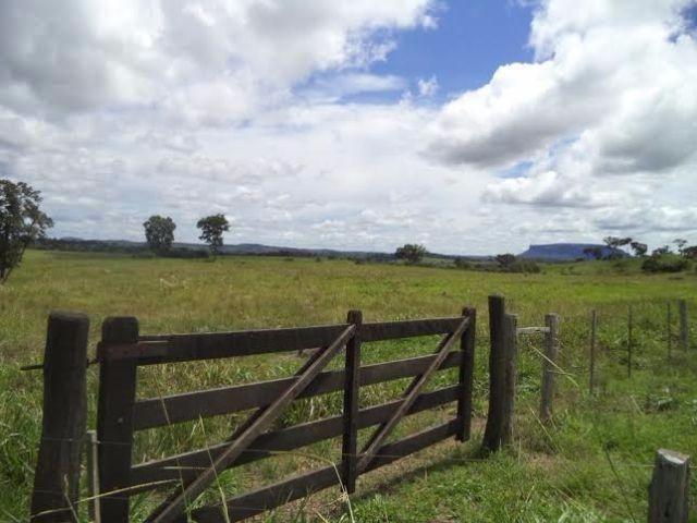 Fazenda c/ 3.480he c/ 80% formada, as margens da BR, Rondonópolis-MT - Foto 4