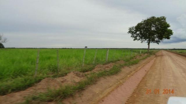 Fazenda c/ 4.500he, C/ 80% aberto, parte faz lavoura, Nova Xavantina-MT