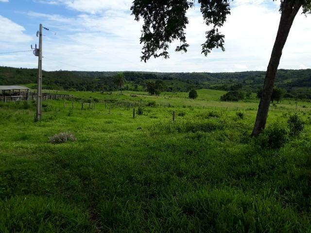 Fazenda c/ 912he, 550he formados, Terra boa, Itiquira-MT - Foto 17