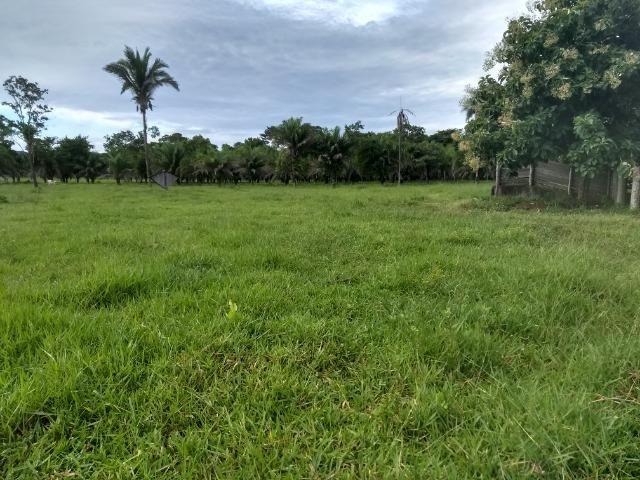 Fazenda com 200he, c/ 50% formado, terra de cultura, 40km de Cuiabá-MT - Foto 13