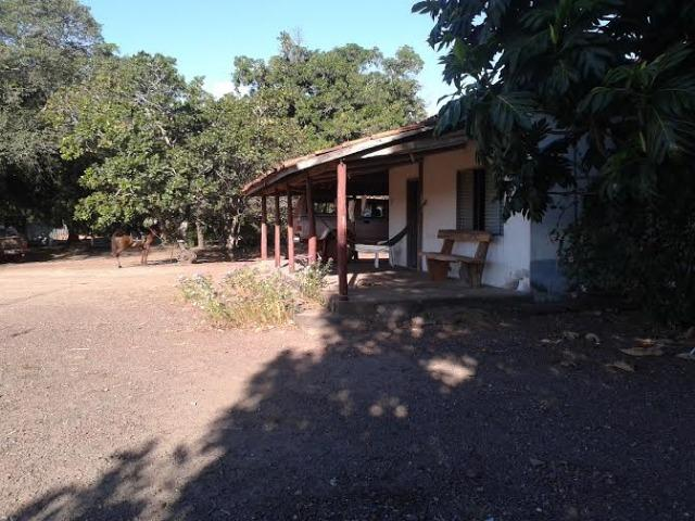 Fazenda c/ 500he c/ 315he formado, a 50km de Cuiabá-MT - Foto 16