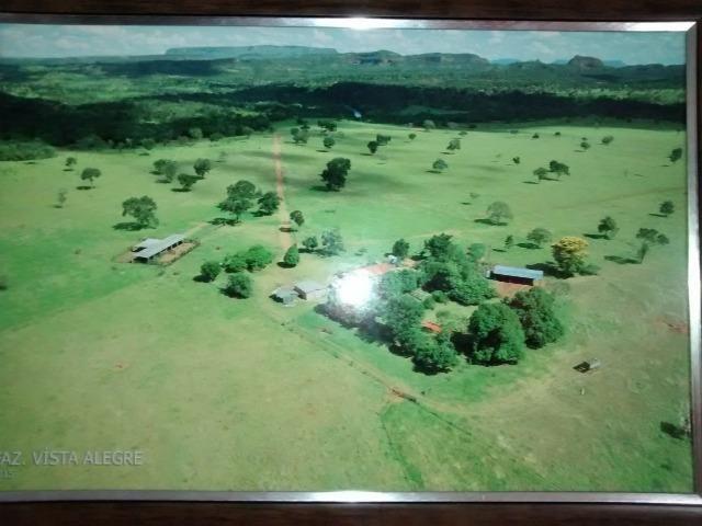 Fazenda com 686he, c/ 350He formado, terra boa, 30km antes Guiratinga-MT - Foto 9