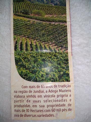 Licor de Jabuticaba Artesanal 370ML - Circuito das Frutas - Interior de SP - Foto 6