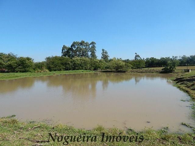 Sítio com 4 lagos, excelente para pesqueiro (Nogueira Imóveis Rurais) - Foto 2