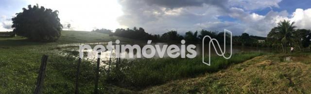 Sítio à venda com 4 dormitórios em Jauá, Camaçari cod:776377 - Foto 16