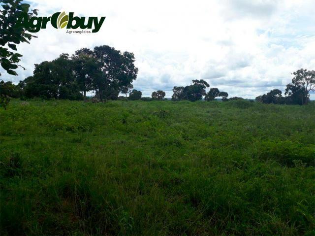 Fazenda Localizada em Alvorada - to